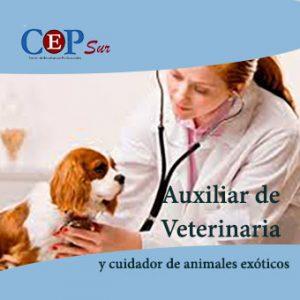 aux-veterinaria
